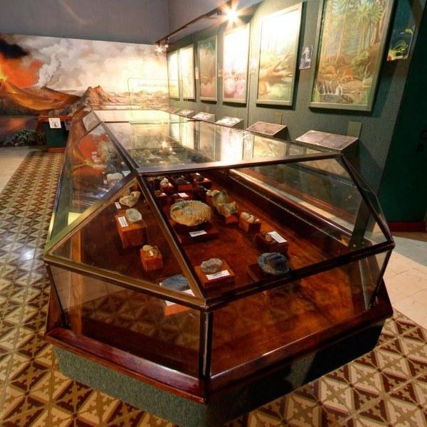 El Museo de Historia Natural de Mérida celebra su aniversario 33