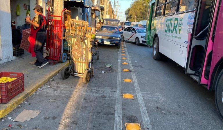 Ayuntamiento clausura publicidad en parabuses
