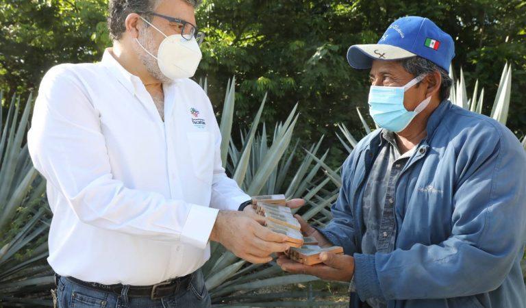 Apicultores reciben abejas reina para mejorar la genética y calidad de la miel